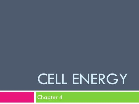 CELL ENERGY Chapter 4. Energy and Living Things A. Autotrophs – produce their own food B. Heterotrophs – get food from somewhere else (what they eat)