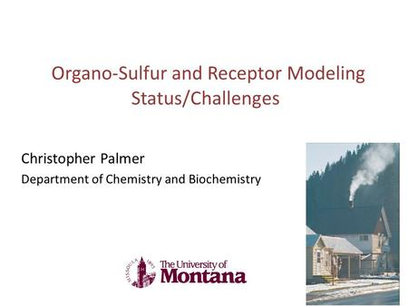 Organo-Sulfur and Receptor Modeling Status/Challenges Christopher Palmer Department of Chemistry and Biochemistry.