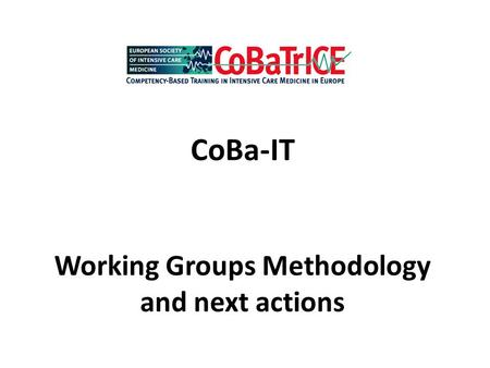 CoBa-IT Working Groups Methodology and next actions.