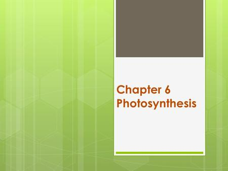 Chapter 6 Photosynthesis. autotroph  An organism that can make its own food  Includes plants, algae, some protists, and some bacteria.