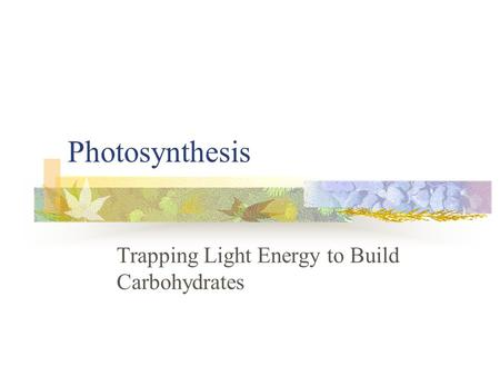 Photosynthesis Trapping Light Energy to Build Carbohydrates.
