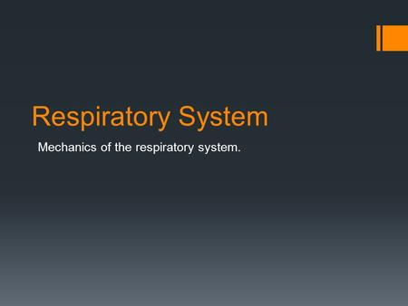 Respiratory System Mechanics of the respiratory system.