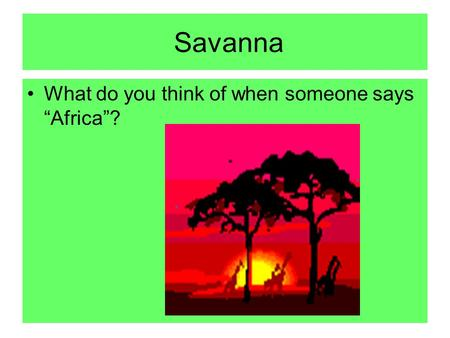 "Savanna What do you think of when someone says ""Africa""?"