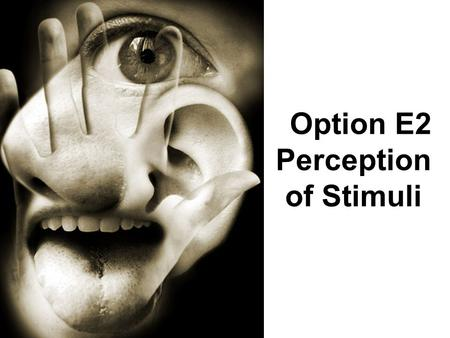 Option E2 Perception of Stimuli. Assessment Statements E.2.1 Outline the diversity of stimuli that can be detected by human sensory receptors. E.2.2 Label.
