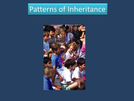 Patterns of Inheritance. The Vocabulary of Genetics Heredity: the passing of traits from parents to offspring Self-Pollination: the process by which plant.