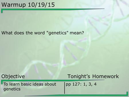 Warmup 10/19/15 What does the word genetics mean? Objective Tonight's Homework To learn basic ideas about genetics pp 127: 1, 3, 4.
