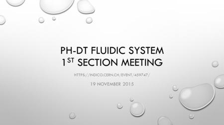 PH-DT FLUIDIC SYSTEM 1 ST SECTION MEETING HTTPS://INDICO.CERN.CH/EVENT/459747/ 19 NOVEMBER 2015.