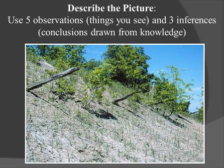 Describe the Picture: Use 5 observations (things you see) and 3 inferences (conclusions drawn from knowledge)