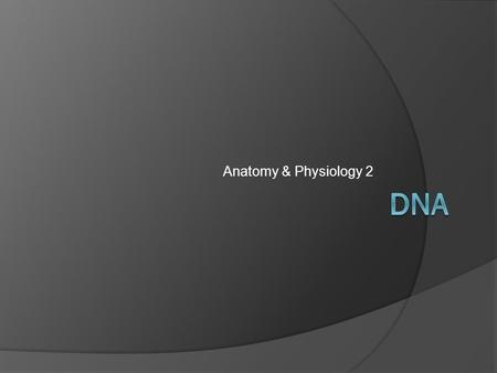 Anatomy & Physiology 2. The DNA Molecule  DNA is what makes genes  DNA stands for deoxyribonucleic acid  It is a molecule that makes up genes and determines.