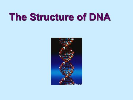 "The Structure of DNA. What is DNA? DNA (or Deoxyribonucleic Acid)DNA (or Deoxyribonucleic Acid) is often called ""The blueprint of life"". DNA, like Proteins,"