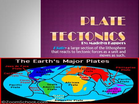 By: Madelyn Kappers Plate Plate~ a large section of the lithosphere that reacts to tectonic forces as a unit and moves as such.