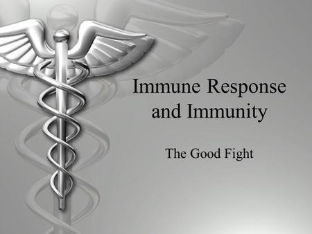 Immune Response and Immunity The Good Fight. Immune Response An immune response is when your body's B-cells make antibodies against a particular antigen.