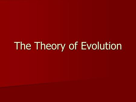 The Theory of Evolution. What is the Theory of Evolution? Theory: well-supported testable explanation of phenomena that have occurred in the natural world.