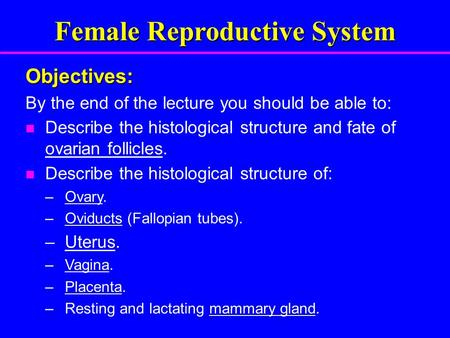 Female Reproductive System Objectives: By the end of the lecture you should be able to: Describe the histological structure and fate of ovarian follicles.