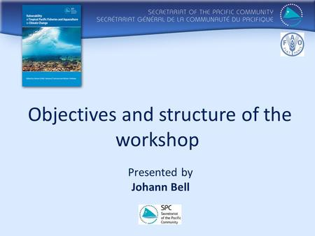 Objectives and structure of the workshop Presented by Johann Bell.