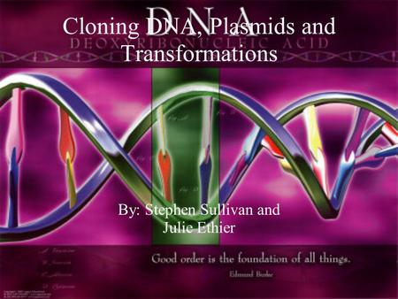 Cloning DNA, Plasmids and Transformations By: Stephen Sullivan and Julie Ethier.