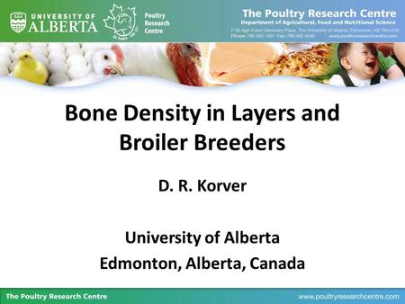 Bone Density in Layers and Broiler Breeders D. R. Korver University of Alberta Edmonton, Alberta, Canada.