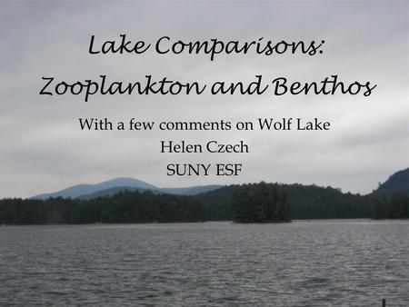 Lake Comparisons: Zooplankton and Benthos With a few comments on Wolf Lake Helen Czech SUNY ESF.