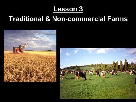 Lesson 3 Traditional & Non-commercial Farms Types of Agriculture Commercial farming involves the production of food for sale. ~ Ex: The large wheat farms.