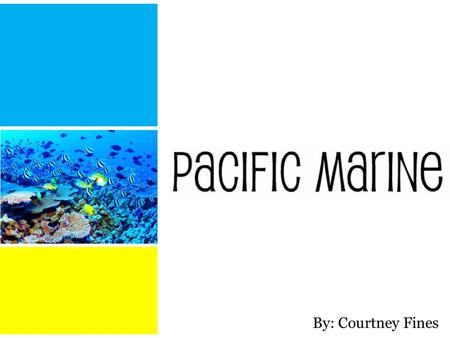 By: Courtney Fines. The Pacific Marine ecozone begins at the British Columbia coast.