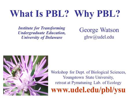What Is PBL? Why PBL? Institute for Transforming Undergraduate Education, University of Delaware George Watson  Workshop.