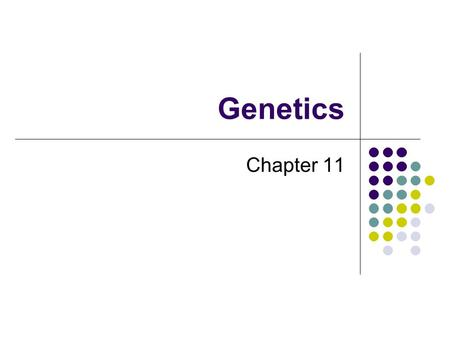 Genetics Chapter 11. Basic Terms Trait – an inheritable physical characteristic May be internal or external Ex: Eye color, hair color, blood type, personality.
