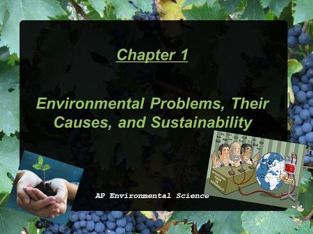 Chapter 1 Environmental Problems, Their Causes, and Sustainability AP Environmental Science.