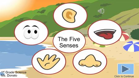 The Five Senses 1 st Grade Science Ms. Donato Click to Continue.
