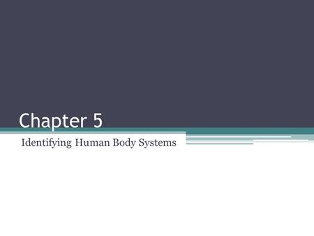 Chapter 5 Identifying Human Body Systems. The Skeletal and Muscular System.