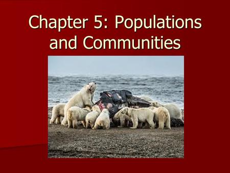 Chapter 5: Populations and Communities. Useful Definitions Population – Group of organisms that all belong to the same species and live in a specific.