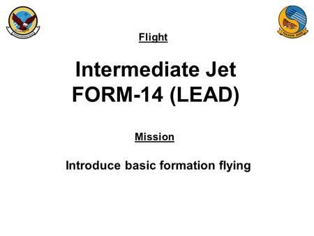 Flight Mission Intermediate Jet FORM-14 (LEAD) Introduce basic formation flying.