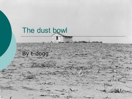 The dust bowl By t-dogg. The cause Many people think that the dust bowl was a natural disaster, but it could have been avoided. The dust bowl was caused.