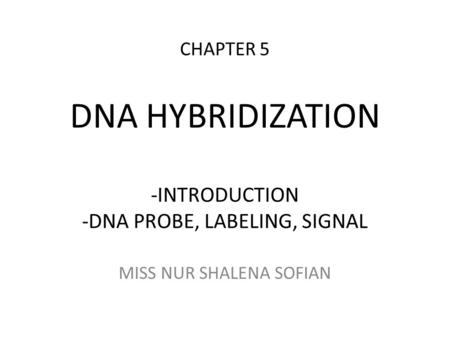 DNA PROBE, LABELING, SIGNAL
