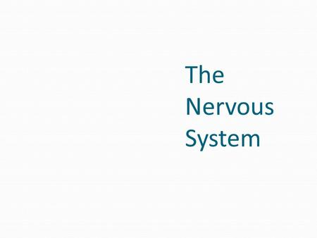The Nervous System. Functions of the Nervous System Figure 7.1.