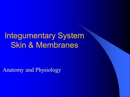 Integumentary System Skin & Membranes Anatomy and Physiology.