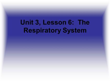 Unit 3, Lesson 6: The Respiratory System. Daily Food for Thought 2 What does the nervous system do?