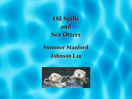 Oil Spills and Sea Otters Summer Stanford Johnson Liu Summer Stanford Johnson Liu.