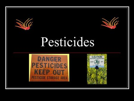 "Pesticides. Pesticides are… Poisons that are sprayed to kill insects and other pests. Examples include DDT, DEET, ""Roundup"", and diazinon."