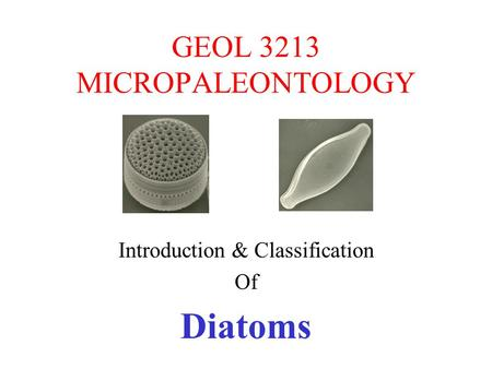 GEOL 3213 MICROPALEONTOLOGY Introduction & Classification Of Diatoms.