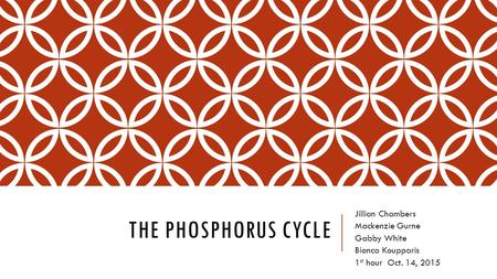 THE PHOSPHORUS CYCLE Jillian Chambers Mackenzie Gurne Gabby White Bianca Koupparis 1 st hour Oct. 14, 2015.