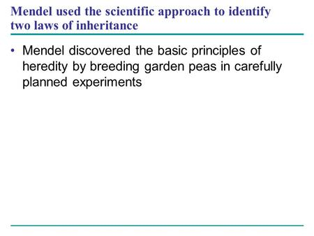 Mendel used the scientific approach to identify two laws of inheritance Mendel discovered the basic principles of heredity by breeding garden peas in carefully.