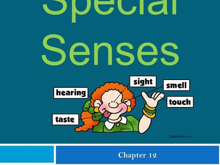 © 2009 The McGraw-Hill Companies, Inc. All rights reserved Special Senses Chapter 12.