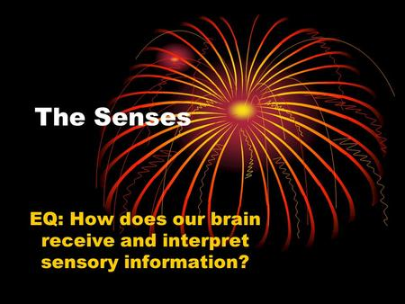 The Senses EQ: How does our brain receive and interpret sensory information?