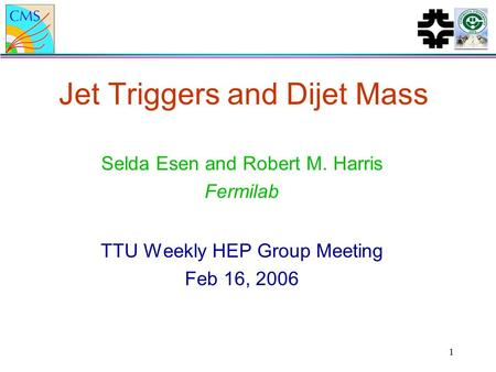1 Jet Triggers and Dijet Mass Selda Esen and Robert M. Harris Fermilab TTU Weekly HEP Group Meeting Feb 16, 2006.