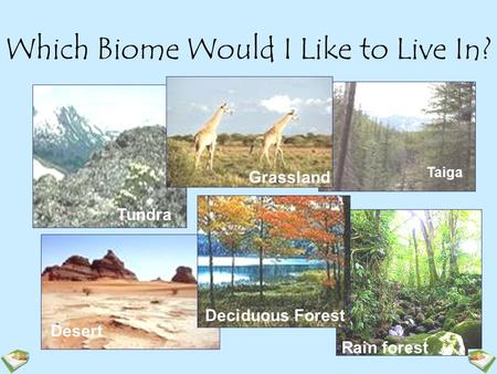 Which Biome Would I Like to Live In? Tundra Taiga Desert Rain forest Grassland Deciduous Forest.