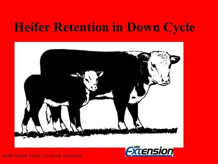 Heifer Retention in Down Cycle Keith Vander Velde, Livestock Specialist.