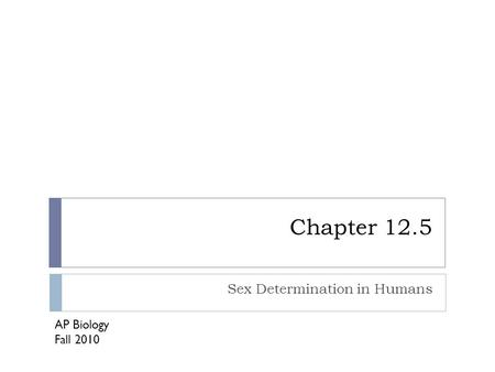 Chapter 12.5 Sex Determination in Humans AP Biology Fall 2010.