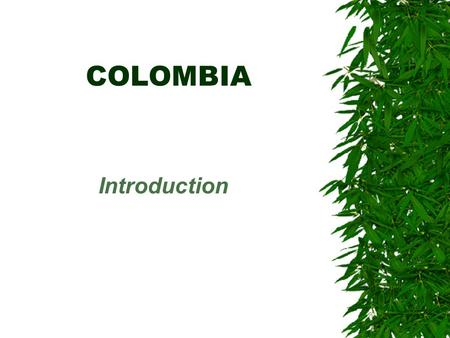 COLOMBIA Introduction. Geography  Regions –Andes –Atlantic Coast –Pacific Coast –Jungle (Leticia Corridor)