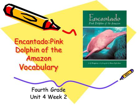 Encantado:Pink Dolphin of the Amazon Vocabulary Fourth Grade Unit 4 Week 2.