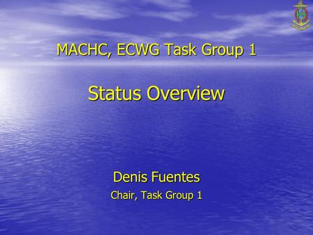 MACHC, ECWG Task Group 1 Status Overview Denis Fuentes Chair, Task Group 1.